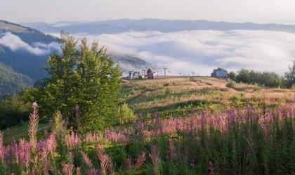Гора Гемба (1 491м), Полонина Боржава - GUIDE.KARPATY.UA